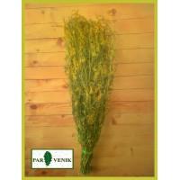 Банная трава Донник в пучке, от 1 до 10 штук, от 135 до 115 рублей