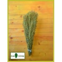 Банная трава Полынь горькая в пучке, от 1 до 10 штук, от 110 до 90 рублей