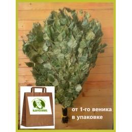 Веник берёзовый Отборный 2021 года,  в упаковке, от 1 до 10  штук, цена от 180 до 150 рублей
