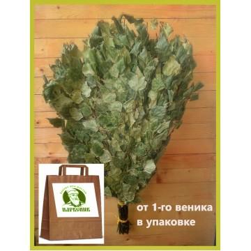 Веник берёзовый Отборный 2020 года,  в упаковке, от 1 до 10  штук, цена от 180 до 150 рублей