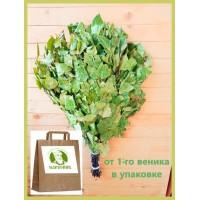 Веник берёзовый Отборный 2021 года,  в упаковке, от 1 до 10  штук, цена от 200 до 175 рублей