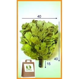 Веник дубовый кавказский Экстра, цена за штуку, в упаковке 2019 года