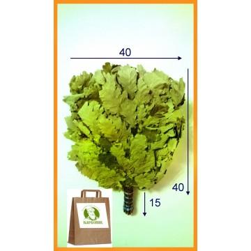 Веник дубовый кавказский Экстра, цена за штуку, в упаковке 2020 года, с 5 июня в наличии