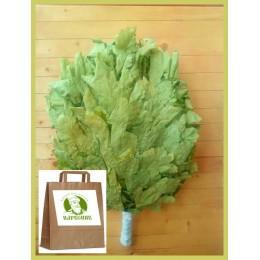 Веник дубовый кавказский Экстра 2020 года, в упаковке, от 1 до 10 штук, цена от 300 до 260 рублей