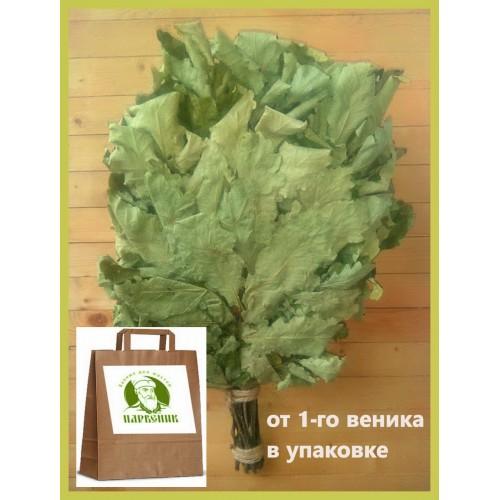 Веник дубовый отборный кавказский, 2021 года, в упаковке,  от 1 до 10 штук, цена от 265 до 240 рублей.
