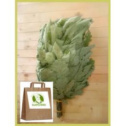 Веник дубовый кавказский стандартный 2020 года, в упаковке, от 1 до 10 штук, цена от 220 до 200 рублей