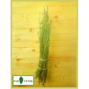 Иссоп трава в пучке