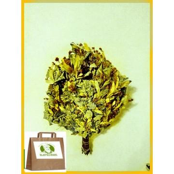 Банный липовый  веник Экстра, в упаковке, от 1 до 10 штук, цена от 230 до 200 рублей