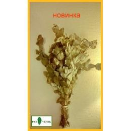 Эвкалипт серебристый (ментол) в упаковке, от 1 до 10 штук, от 195 до 165 рублей